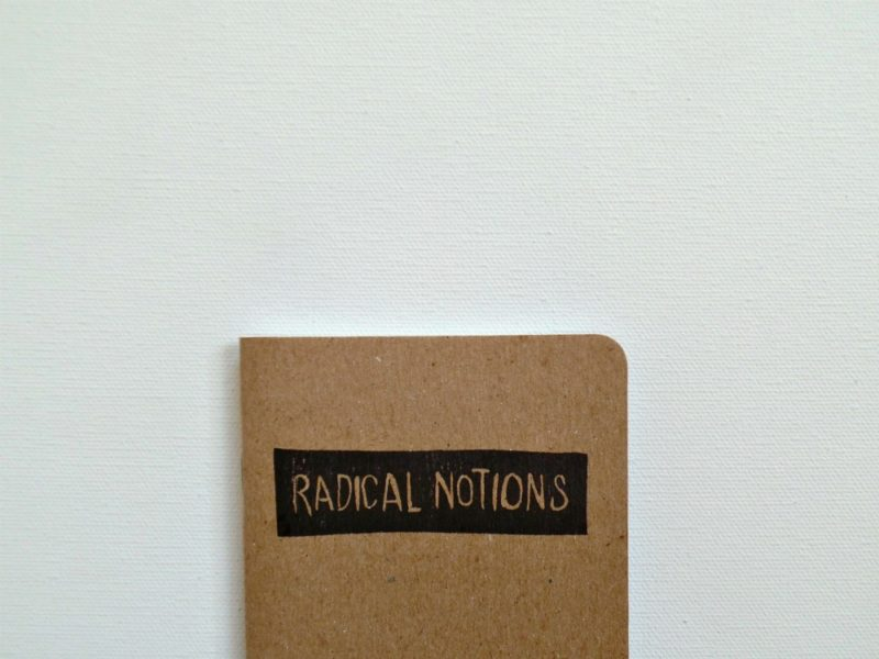 radical notions pocket notebook