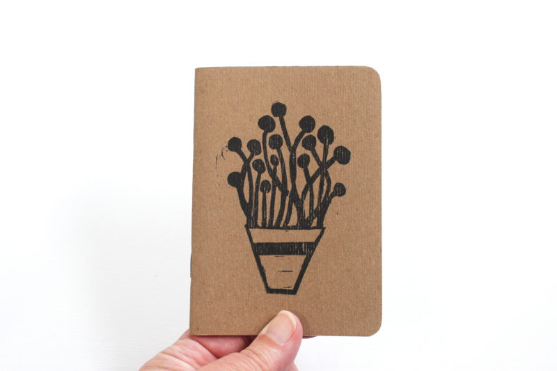 plants in pots blank notebook in hand