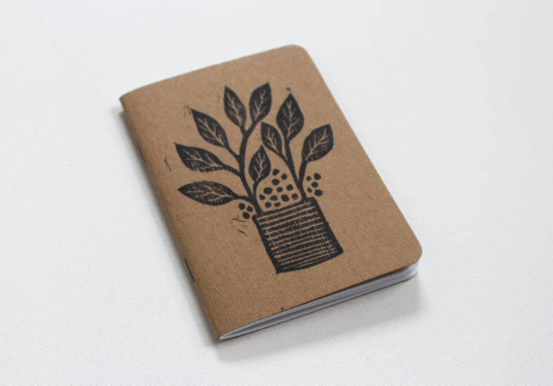 plants in pots notebook